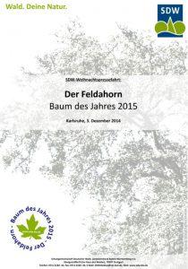 Deckblatt für eine Pressemappe zur Vorstellung des Baumes des Jahres 2015